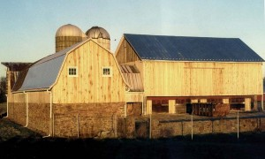 Loafing Shed and Bank Barn After Restoration