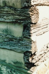 Heavy Deterioration From Logs Being Exposed for Many Decades