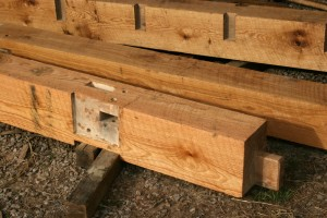 As we finish cutting each timber we lightly sand it and then apply LandArk natural finishing oil.  The oil helps slow the rate of drying to reduce checking in the timber, protects it from dirt, and looks fantastic!